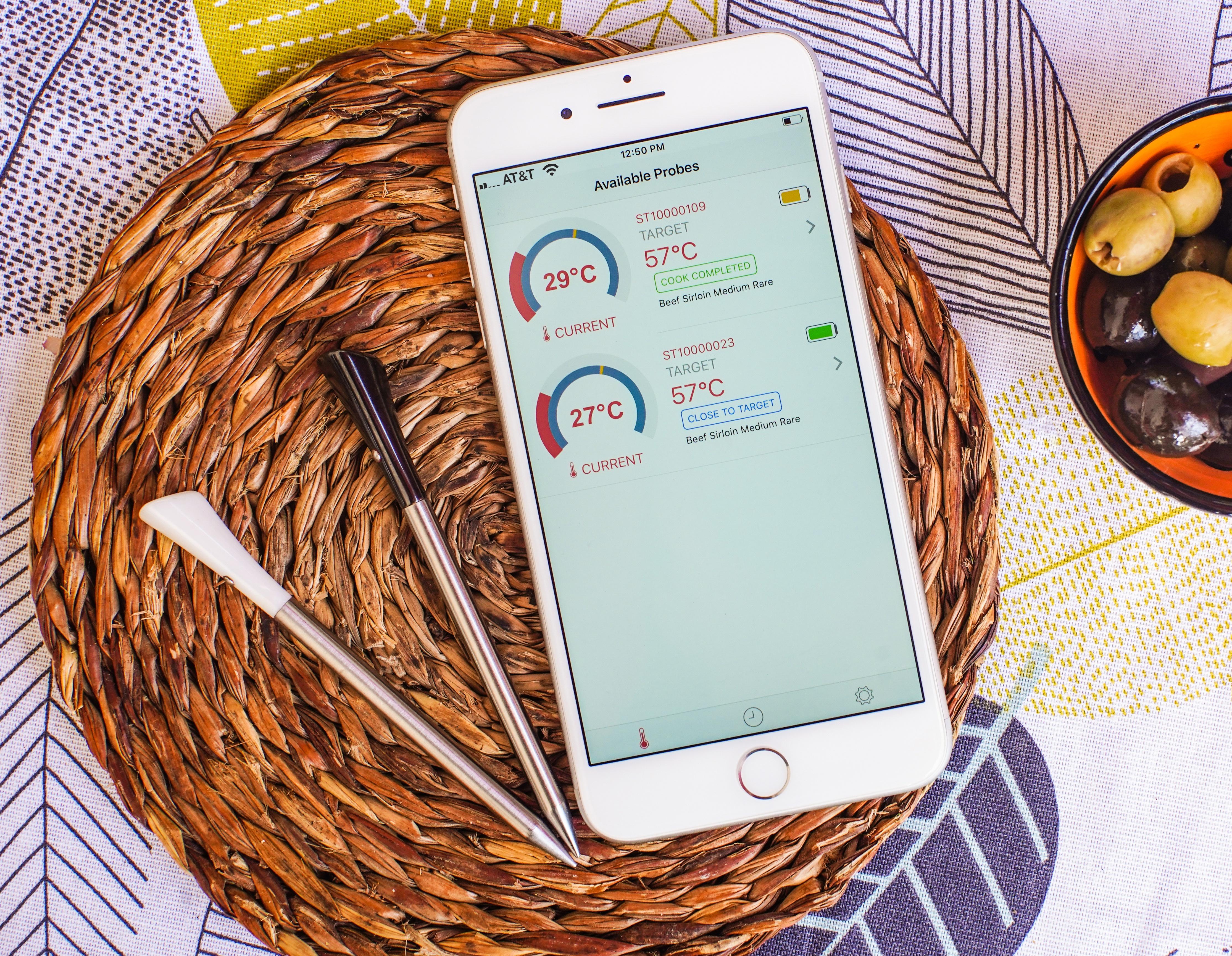 True Wireless Intelligent Thermometer